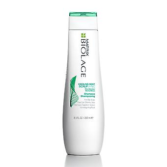 Matrix Biolage Scalpsync kühlen Mint Shampoo 250 ml