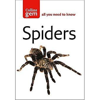 Aranhas (Collins GEM)