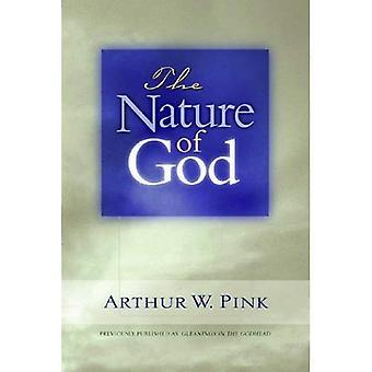 Nature de Dieu