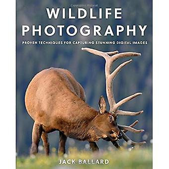 Wildlife Photography: Proven� Techniques for Capturing Stunning Digital Images