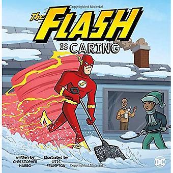 Der Blitz ist fürsorglich (DC Superhelden Charakter Bildung)