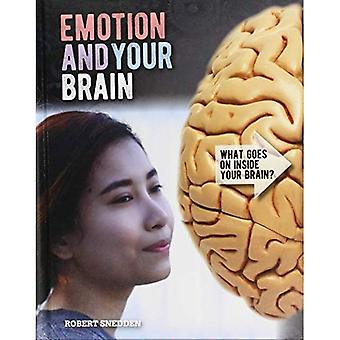 Emotion and Your Brain