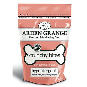 Arden Grange sprødt bid rige i fersk laks 5kg