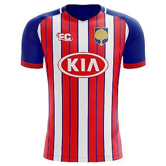 2cffa02ad 2018-2019 Atletico Madrid Fans Culture Home Concept Shirt