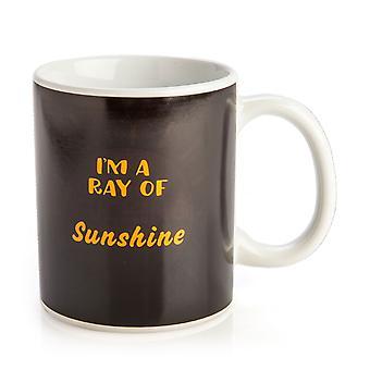 I'm a Ray of F*cking Sunshine Heat Change Mug