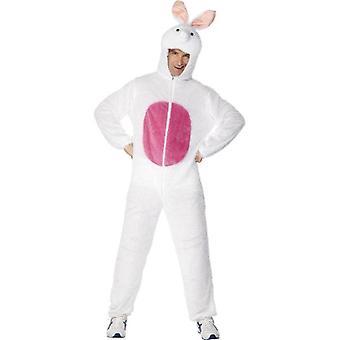 زي الأرنب/الأرنب.  الصدر 38