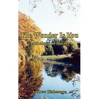 The Wonder Is You Anthology of Poems by Blakemore & Andrew