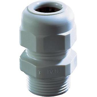 Cable gland PG48 Polyamide Grey Wiska SKV PG 48 RAL 7035 1 pc(s)