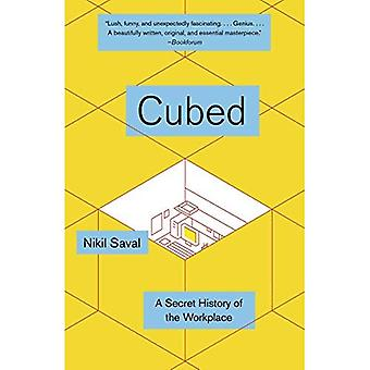 Cubed: The Secret History of the Workplace