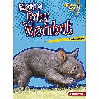 Meet a Baby Wombat (Lightning Bolt Books Baby Australian Animals)