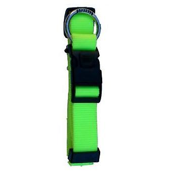 Freedog Fluor Neon Green Nylon Collar (Dogs , Collars, Leads and Harnesses , Collars)