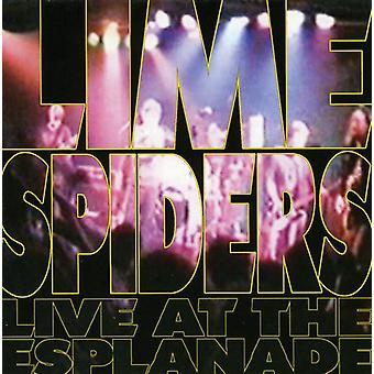 Kalk edderkopper - Live på Esplanade [CD] USA importen
