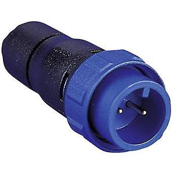 Bulgin PX0410 / 03P/5560 400 série Buccaneer connecteur Nominal actuel (détails): 8 A