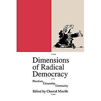 Dimensioner av radikal demokrati: Pluralism och medborgarskap (Phronesis)