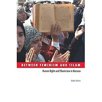 Zwischen Feminismus und Islam: Menschenrechte und Scharia in Marokko (soziale Bewegungen, Protest und Streit)