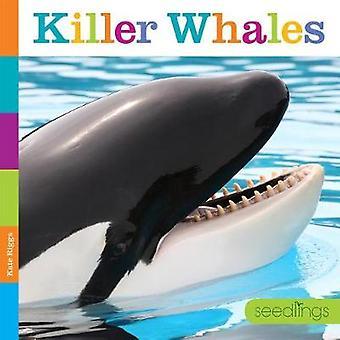 Seedlings - Killer Whales by Kate Riggs - 9781628324846 Book