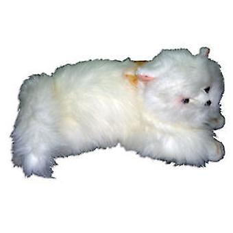 Import Stuffed Kitty Lanitas 48cm. (Toys , Dolls And Accesories , Soft Animals)
