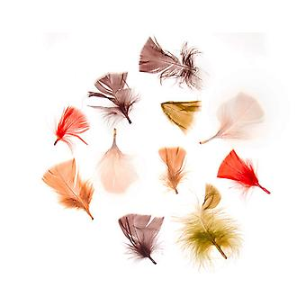 14g Natural Assorted Colour Craft Feathers