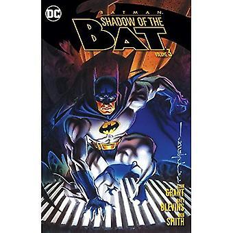 Batman: Sombra do bastão: Volume 3