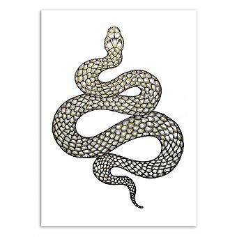 Art-affisch-Snake ' s charm-Ella Mazur 50 x 70 cm