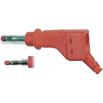 Straight blade plug Plug, straight Pin diameter: 4 mm Red Stäubl