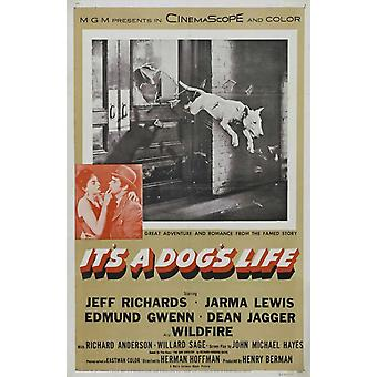 Its a Dogs Life Movie Poster (11 x 17)
