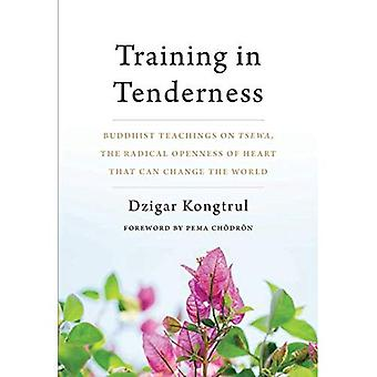 Training in Tenderness: Buddhist Teachings on Tsewa, the Radical Openness� of Heart That Can Change the World