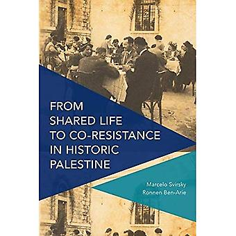 From Shared Life to Co-Resistance in Historic Palestine (Critical Perspectives on Theory, Culture and Politics)