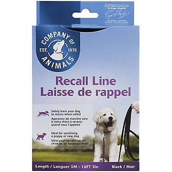 The Company Of Animals Long Line (Dogs , Collars, Leads and Harnesses , Leads)