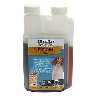 Blooming Pets Dog & Cat Flexijoint Liquid 250ml