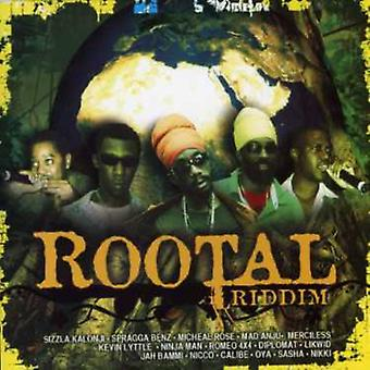 Rootal Riddim - Rootal Riddim [CD] USA importerer