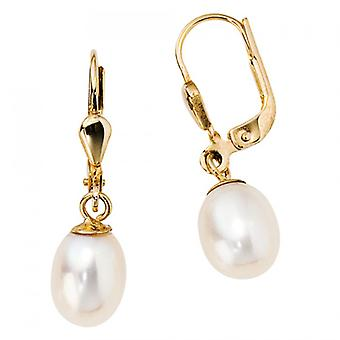 Boutons 585 /-g-gold Pearl Earrings 14 k gold Pearl Earrings pearls