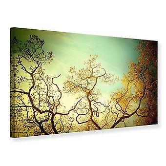 Canvas Print Autumn Trees
