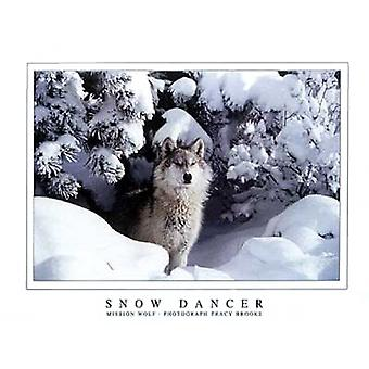 Snow Dancer Poster Print von Tracy Brooks (32 x 24)