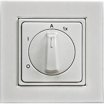Outdoor light switch IP20 Pure white Arnold Elek