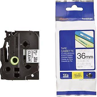 Labelling tape Brother TZe, TZ TZe-161 Tape colour: Transparent Font colour:Black 36 mm 8 m