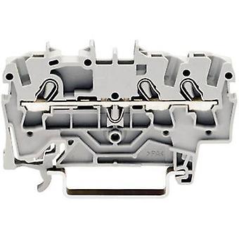 Continuidad 5,20 mm tire del resorte configuración: L gris