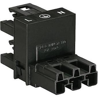 Mains H distributor Mains plug - Mains socket, Mains socket Total number of pins: 2 + PE Black WAGO 1 pc(s)