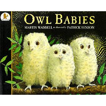 Uil baby's door Martin Waddell - Patrick Benson - 9780744531671 boek