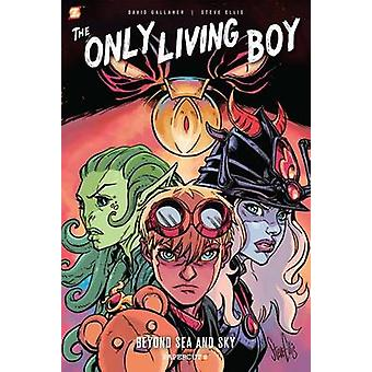 The Only Living Boy - Beyond Sea and Sky by David Gallaher - Steve Ell
