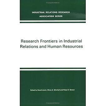 Forschung Grenzen in Industrial Relations und Human Resources (nien Forschung Volumen)