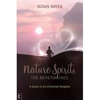 Nature Spirits: The Remembrance: A Guide to the Elemental Kingdom