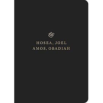 ESV Schriftstellen-Tagebuch: Hosea, Joel, Amos und Obadja