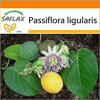 Saflax - Garden in the Bag - 20 seeds - Sweet Granadilla - Grenadelle - Granadilla - Granadilla - Süße Granadilla