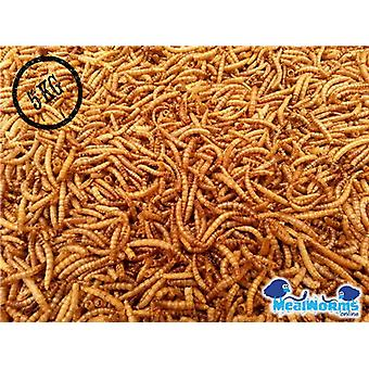5Kg Dried Mealworms For Poultry