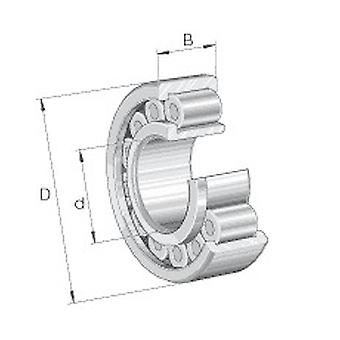 INA RSL183005-A-XL Radial Cylindrical Roller Bearing