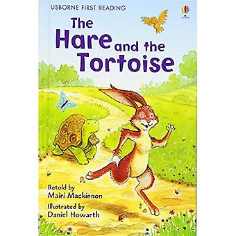 Zając i żółw (Usborne pierwsze czytanie: poziom 4)
