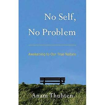 No Self - No Problem - Awakening to Our True Nature by Anam Thubten -