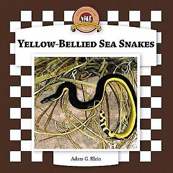 Yellow-Bellied Sea Snakes by Adam G Klein - 9781596792814 Book