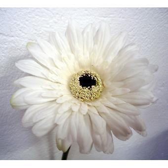 Artificial Real Touch Gerbera Deluxe